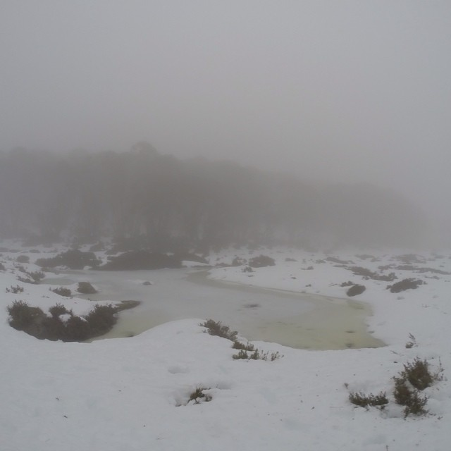 Chillin' in the chillin' snow... #bawbaw #mtbawbaw #snow
