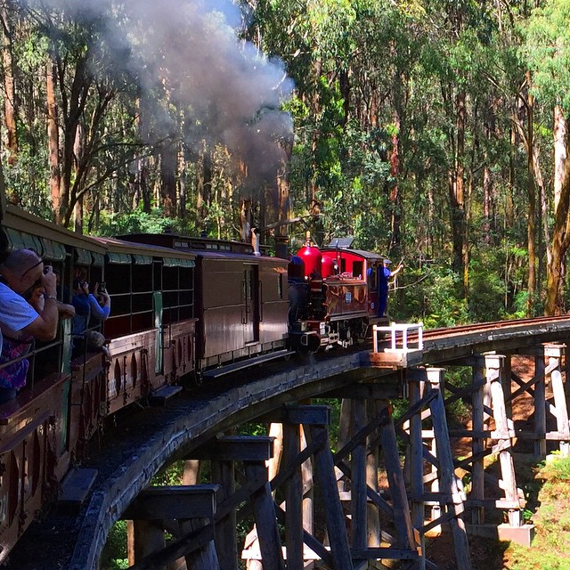 #PuffingBilly from #Gembrook to #Emerald Station for the #YoungSunSpecial 60th Anniversary